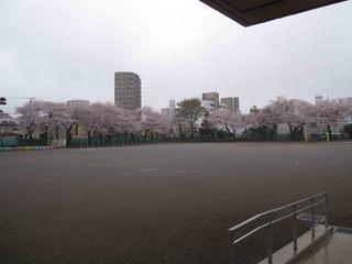 042 2011.4.9(土)林間練習(林間小) 002.jpg